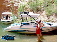 1997 Wellcraft excel 19ft with Airborne Wakeboard Tower