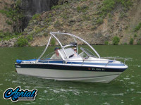 1988 Blue Water with Ascent Wakeboard Tower