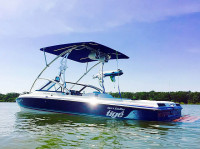 1994 Tige 2002FLSM with Assault Wakeboard Tower